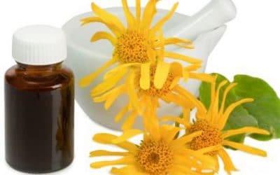 Wat kan homeopathie bij een epidemie?